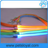 Factory Pet Accessory LED Nylon Pet Dog Leash Lead