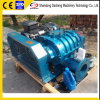 Dsr250b High Efficient Roots Blower/Roots Air Fan for Sewage Treatment
