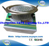 Yaye 230mm 36W/18W Ce LED Downlight / LED Ceiling Lights with 2 Years Warranty