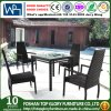 Outdoor Garden Rattan Dining Set (TG-152)
