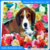 Custom 3D Color Printing Pet/PP Plastic Kids Placemat