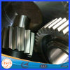China Manufacturing Metal Steel Forging Spur Gears