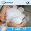 Koller 3000kg Dry Flake Ice Plant for Fish and Meat Processing