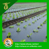 PE Pre- Stretch Black Mulch Film for Agriculture and Gardening Use
