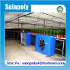 2017 Hot Selling Most Popular Composite Greenhouse
