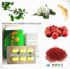 Snow Lotus with Other Super Chinese Herbal Extract for Men Power Supplement