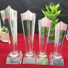 K9 Material High Quality Glass Award Star Crystal Trophy