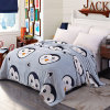 Customized Professional Plush Blanket China Cheap Wholesale Blankets