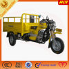 Easily Operated Open Cargo Tricycle/ Hot Selling Motorized Cargo in Africa