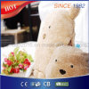 Factoy Whole Sale Cute Bear Hand Warmer with Timer Controller
