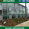 Venlo Hydroponic Venlo Multi-Span Tunnel Planting Tomato Vegetables Polycarbonate PC Sheet Agricultural Greenhouse for Farming/Flowers/Vegetables