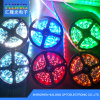 2835 LED Strip Light 72LED/M 72W/Roll 12000k White Color
