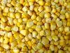 2014 New Season IQF Sweet Corn Kernels