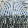 Factory of Hot-Dipped Galvanized Ringlock Scaffolding