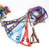 PVC Luminous Five-Pointed Star Dog Collars Dp-CS1310
