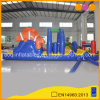 Ocean Floating Inflatable Water Toys Games for Water Play Equipment (AQ3630)