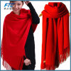Lady Fashion Cashmere Wool Scarf
