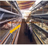 4 Tiers Battery Broiler Cage for Poultry Chicken Farm