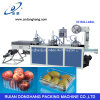China Supplier of Fruit Tray Making Machine