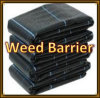 Black Color Weed Barrier PP Weed Mat of Woven Faric for Agriculture