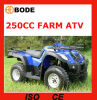 EEC 250cc Manual Transmission ATV Mc-373