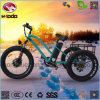 Aluminum Alloy Three Wheel 500W Fat Tire Cargo Electric Tricycle