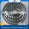 Galvanized Umbrella Head Roofing Nails with Smooth/Twist Shank