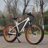 500W Mountain Electric Bike with 8fun Motor