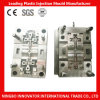High Precision Plastic Injection Mold for Electronical Products (MLIE-PIM140)