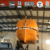 Fibeglass Solas Marinetotally Enclosed Lifeboat and Rescue Boat for (F67C)