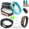 USB Pen Drive Charging Bluetooth Smart Bracelet with Heart Rate Monitoring (HB02)