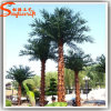 China Manufacture Fiberglass Plastic Artificial Palm Tree