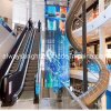 Indoor Transparent LED Advertising Display Video Wall