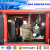 30kVA/24kw Biogas/LNG/CNG/Natrual Gas Engine Power Electric Generator