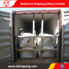 Shipping Agent in China to Dallas/Texas Air Sea Freight