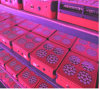 2017 Full Spectrum LED Chip Grow Light Fish Tank Marine LED Aquarium Lights Dimmable 165W 170W 175W Updated LED Light