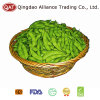 Top Quality IQF Soy Beans with Good Quality