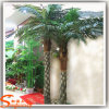 Different Type Artificial Fern Palm Tree on Hot Sale