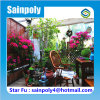Sainpoly Brand Hot Sale Glass Garden Greenhouse