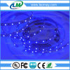 SMD2835 LED Strips with High Lumen LED Chip