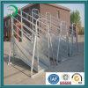 Livestock Loading Ramps, Best Livestock Equipment