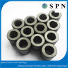 Customized Ferrite Multipolar Magnet Rings for Rotor