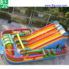 Giant PVC Inflatable Slide for Kids and Adult (DJWSMD8000011)