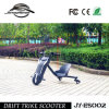 High Quality 100W Electric Motorcycle for Sale