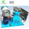 Oxygen Gas O2 Diaphragm Membrane Gas Compressor