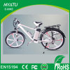 48V 500W Mountain Bicycle for Electric Bicycle Importers