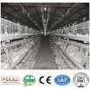 Chicken House Broiler Chicken Cage with Automatic Equipment