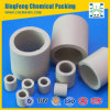 Ceramic Raschig Ring (Tower Filling Packing)