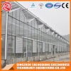 Multi-Span Hollow Tempered Glass Greenhouse