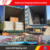 LCL Shipping From China to United States of America Freight